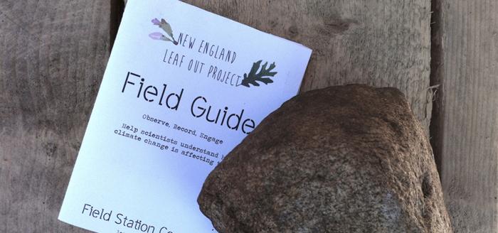 Field Guide 1